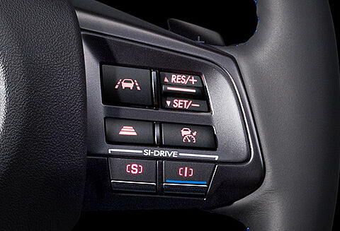 Adaptive Cruise Control Switch